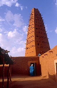 13th century Grand Mosque built of clay, Agadez, Niger, 2004.  -  Steve O. Taylor (GHF)