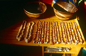 Neolithic stone beads, Niamey, Niger, 2004.  -  Steve O. Taylor (GHF)