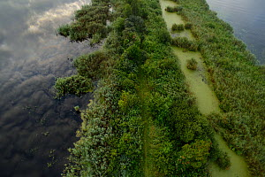 Peene river and flooded land near Anklamer Stadtbruch, Anklam, Germany, August 2014.  -  Wild  Wonders of Europe / Zankl