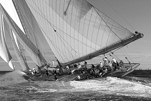 Black and White image of 'Elena' during Les Voiles De St Tropez regatta, St Tropez, France, October 2013. All non-editorial uses must be cleared individually. - Ingrid  Abery