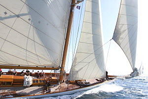 Classic yacht 'Elena' during Les Voiles De St Tropez regatta, St Tropez, France, October 2013. All non-editorial uses must be cleared individually. - Ingrid  Abery
