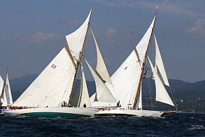 Moonbeam III (left) and Moonbeam IV (right) off the start, Les Voiles De St Tropez regatta, St Tropez, France, October 2013. All non-editorial uses must be cleared individually. - Ingrid  Abery