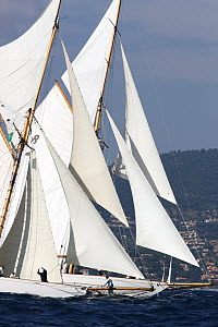 Moonbeam III (left) and Moonbeam IV (right) off the start of Les Voiles De St Tropez regatta, St Tropez, France, October 2013. All non-editorial uses must be cleared individually. - Ingrid  Abery