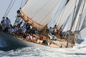 Classic yacht 'Elena', Les Voiles De St Tropez regatta, St Tropez, France, October 2013. All non-editorial uses must be cleared individually. - Ingrid  Abery