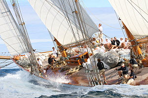 Action on board classic yacht 'Elena' during Les Voiles De St Tropez regatta, St Tropez, France, October 2013. All non-editorial uses must be cleared individually. - Ingrid  Abery