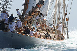 Crew aboard schooner 'Elena' at Les Voiles De St Tropez regatta, St Tropez, France, October 2013. All non-editorial uses must be cleared individually. - Ingrid  Abery