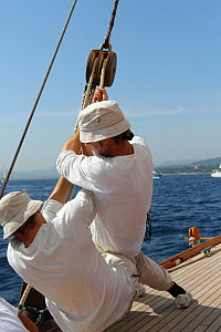 Crew hauling rope aboard the 1911 Classic yacht Mariquita, day one of Les voiles de St Tropez, St Tropez, southern France, September 2011. All non-editorial uses must be cleared individually. - Ingrid  Abery