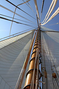 View up the mast of the 1911 Classic yacht Mariquita, day one of Les voiles de St Tropez, St Tropez, southern France, September 2011 All non-editorial uses must be cleared individually. - Ingrid  Abery
