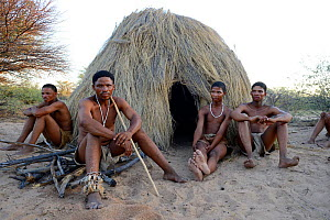 Naro San Bushmen sitting in front of their hut, Kalahari, Ghanzi region, Botswana, Africa. Dry season, October 2014.  -  Eric Baccega