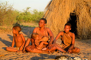 Naro San woman and children sitting in front of their hut in the evening light with baby suckling. Kalahari, Ghanzi region, Botswana, Africa. Dry season, October 2014. - Eric Baccega