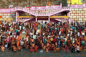Kumbh Mela, a large Hindu pilgrimag, iin which Hindus gather to bathe in the Ganges, Haridwar, India. April 2010.  -  Axel  Gomille