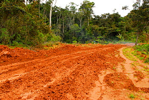 Graphite mine near the Andasibe-Mantadia National Park, one of the environmental problems affecting the ecosystem of the rainforest. Madagascar, March 2005.  -  Enrique Lopez-Tapia