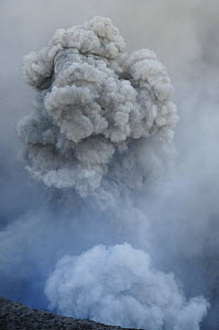 Ash cloud from eruption of Yasur volcano, Tanna Island, Vanuatu, September 2008. - Enrique Lopez-Tapia