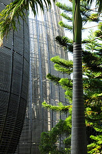 Tjibaou Cultural Center designed by Renzo Piano. The building is designed to be integrated with the surrounding forest. Noumea, New Caledonia, September 2008. - Enrique Lopez-Tapia
