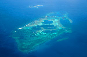 Aerial view of atolls with surrounding coral reefs, off the coast of New Caledonia, September 2008.  -  Enrique Lopez-Tapia