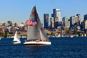 Boats on Lake Union during Tuesday Night 'Duck Dodge' race, Seattle, Washington, USA, July 2014. - Kirkendall-Spring