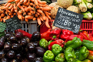 Vegetables including peppers, aubergines, carrots and celery at market at Aix en Provence, France, October. - David Noton