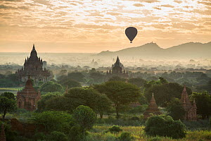 Hot air balloon over the Temples of Bagan at dawn, Myanmar, November 2012.  -  David Noton