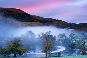 Autumn mist in Dee Valley (Dyffryn Dyfrdwy) at Horseshoe falls, near Llangollen, Denbighshire, Wales, UK, November 2013.  -  David Noton