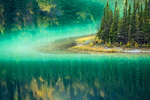 Green waters of Emerald Lake, near Carcross, Yukon Territories, Canada, September 2013. - David Noton