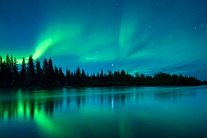 Aurora Borealis (Northern Lights) over the Klondike River, Yukon Territories, Canada, September 2013.  -  David Noton