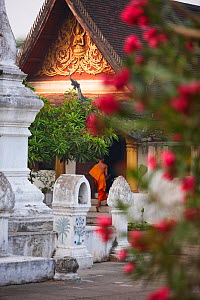 Wat Khili temple, with Buddhist monk in the entrance,  Luang Prabang, Laos, March 2009.  -  David Noton