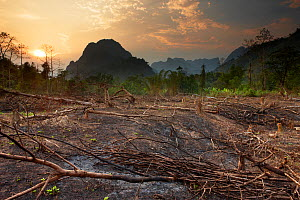 Slash and burn deforestation near Vang Vieng, Laos, March 2009. - David Noton