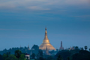 Shwedagon Pagoda in distance, Yangon, Myanmar. November 2012. - David Noton