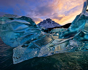 Flawless crystalline ice, produced through millennia of glacial pressure, floating on Lago Grey, Torres del Paine National Park, Chile, June 2014. - Floris  van Breugel