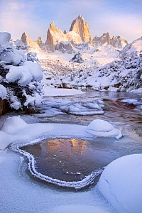 Mount Fitz Roy at dawn on a snowy winter morning, Patagonia region of Argentina near El Chalten, June 2014.  -  Floris  van Breugel