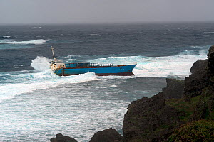 Inter Island container ship, aground and wrecked, Yonaguni Island, East China Sea, Japan. February 2014.  -  Michael Pitts