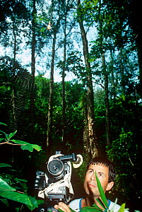 Cameraman Michael Pitts filming a Wood Spider (Nephila sp) and web at Tai Po Kau Nature Reserve, New Territories, Hong Kong. Summer 1988. - Michael Pitts