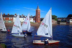 Sailing dinghies launching, Lympstone harbour, Exe Estuary, Devon, UK, July 2013.  -  Rob Cousins