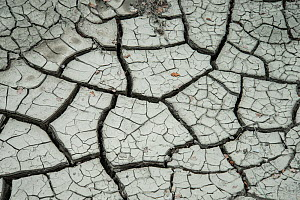 Cracks in drying mud, Provence, France, May.  -  Adrian Davies
