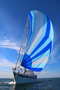 Yacht sailing under spinnaker, Sweden, June 2014. All non-editorial uses must be cleared individually.  -  Philip  Stephen