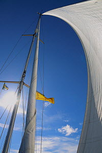 Genoa sail on board yacht, May 2014. All non-editorial uses must be cleared individually.  -  Philip  Stephen