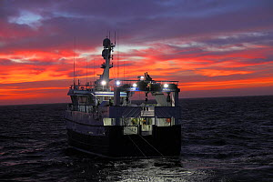 Fishing vessel 'Harvester' shooting trawl net at sunrise. North Sea, April 2014. Property released. All non-editorial uses must be cleared individually. - Philip  Stephen