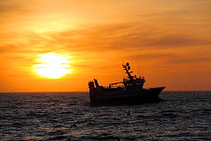 Fishing vessel at sunrise on the North Sea, February 2014. All non-editorial uses must be cleared individually. - Philip  Stephen