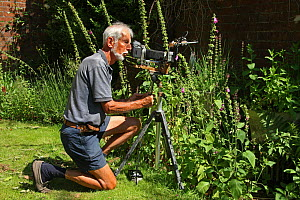 Photographer Kim Taylor using homemade camera and flash equipment for close-up photography in garden, July 2013.  -  Kim Taylor
