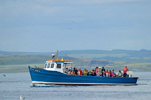Tourists on boat heading to the Farne Islands from Seahouses Harbour, Farne Islands, Northumberland, UK, July.  -  Michel  Poinsignon