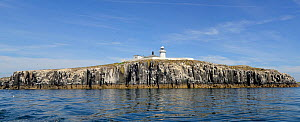 Inner Farne with lighthouse, Farne Islands, Northumberland, UK, July 2013. - Michel  Poinsignon