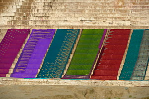 Wet saris drying on steps on the banks of the Ganges, Varanasi, Uttah Pradesh, India, March 2014.  -  Loic  Poidevin
