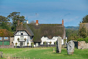 Standing stones with the Red Lion Pub behind, Avebury, Wiltshire, UK, October 2014. - Gary  K. Smith