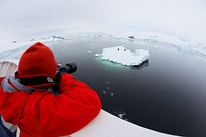 Russell Laman photographing Crabeater seals (Lobodon carcinophaga) on iceberg, The Gullet, Adelaide Island vicinity, Antarctica, February 2011. Model released.  -  Tim  Laman