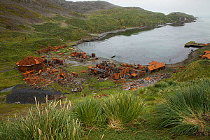 Remains of abandoned whaling station, Prince Olav Harbor, South Georgia, March 2011.  -  Tim  Laman