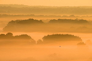 Morning mist over the countryside, Vosges, France, September 2014 - Fabrice  Cahez