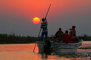 Tourists on boat on wildlife watching trip at sunset, Ibera Marshes, Corrientes Province, Argentina, July 2009.  -  Gabriel Rojo