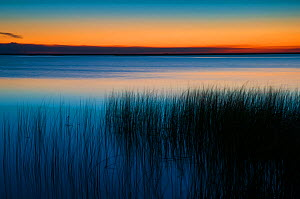 Sunset over the Ibera Marshes, Corrientes Province, Argentina  -  Gabriel Rojo