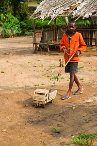 Boy with wooden toy truck. Mbomo Village, Odzala-Kokoua National Park, Republic of Congo (Congo-Brazzaville), Africa, May 2013. - Pete Oxford