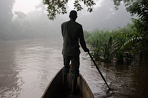 Guide paddling canoe in Lekoli River, Republic of Congo (Congo-Brazzaville), Africa, June 2013. Not available for book covers until 2026 - Pete Oxford